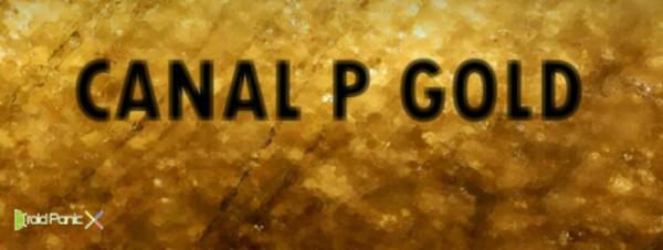 Canal P Gold, una nueva app para ver televisión en directo